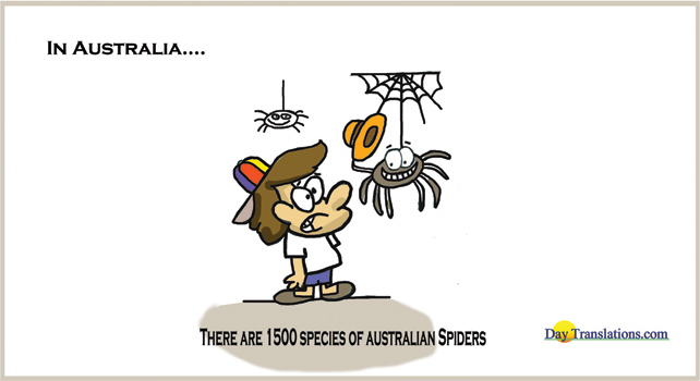 There are 1500 species of Australian spiders - Day News Cartoon Of TheDay