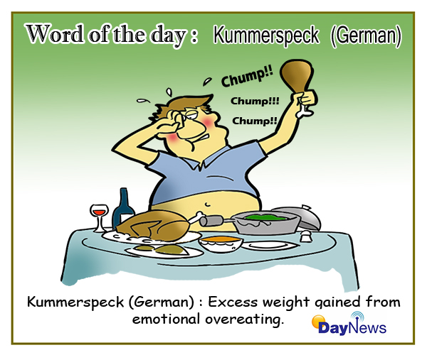 Word of the day: Kummerspeck(German)