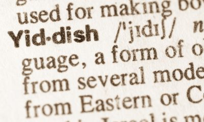 The Yiddish Language