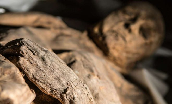 Child Mummy Sheds Light on the History of Smallpox