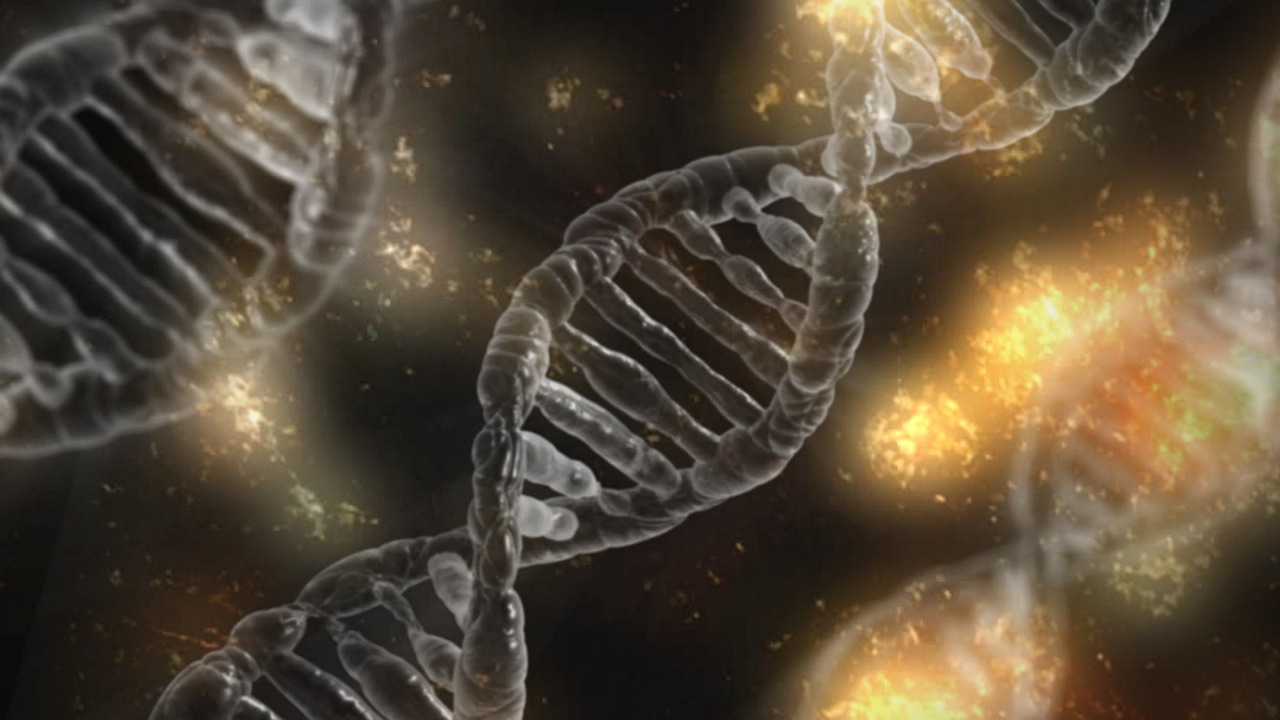 Researchers can now encode 215 petabytes in a single gram of DNA